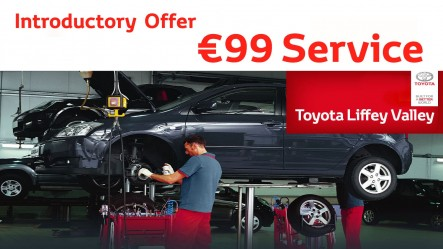 €99 Introductory Service Offer